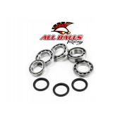 Kit Roulement & Joints de Differentiel All Balls Kawasaki Kvf650i Avan
