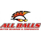 Kit Joints Differentiel 25-2068-5 ALL BALLS CAN AM 400 CAN AM 400 OUTL