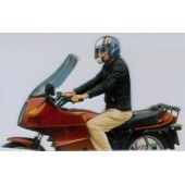 Bulle Arizona Claire Bmw R 80/100 Rt -